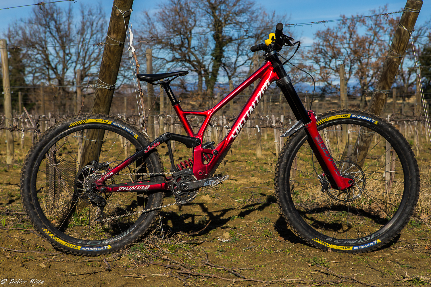Specialized Demo de Louis