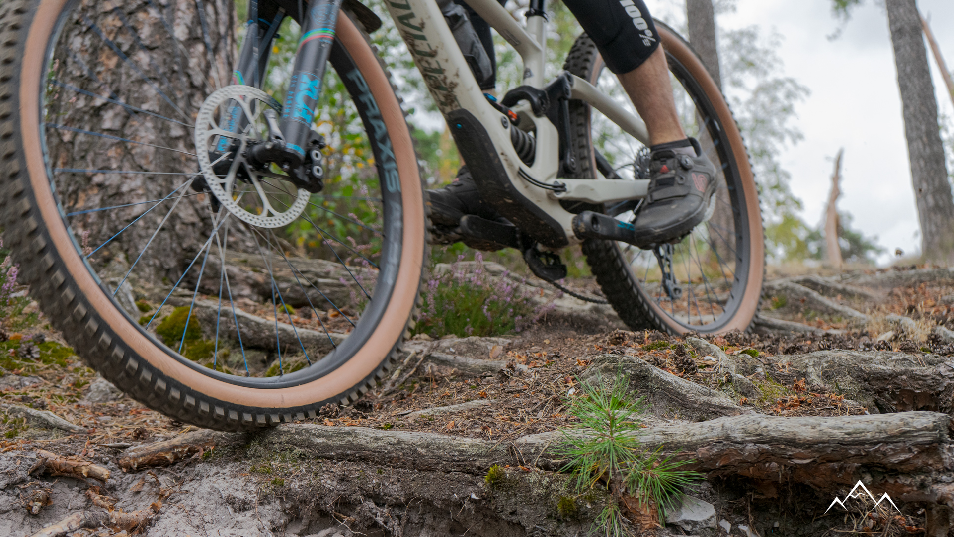 Specialized Soil Searching tyres